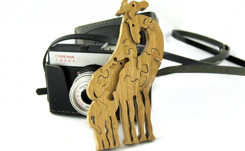 Żyrafa u fotografa
